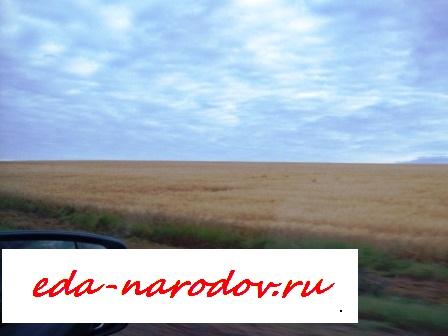 Дорога в Братск